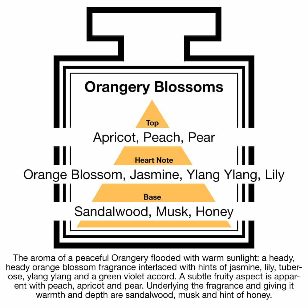 Fragrance Description Orangery Blossoms Apricot Ylang Honey Sandalwood