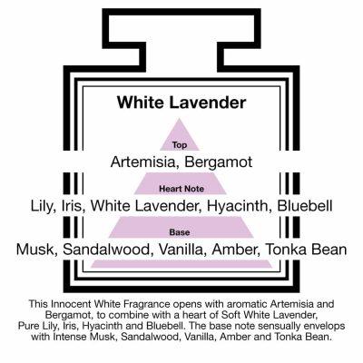 Fragrance Description White Lavender Artemisia Lily Musk Vanilla