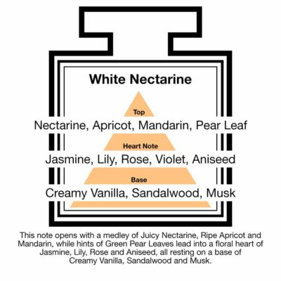 Fragrance Description White Nectarine Apricot Mandarin Pear Aniseed