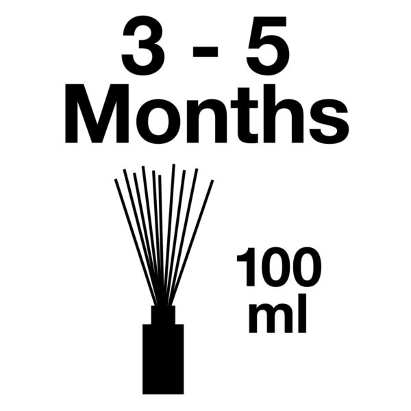 Pairfum Infographic Reed Diffuser Refill Volume 100 Ml Longlasting