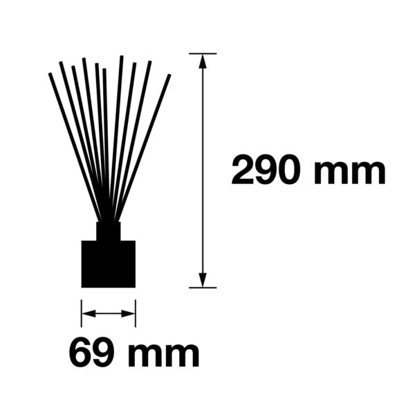 Pairfum Infographic Reed Diffuser Size 100 Ml