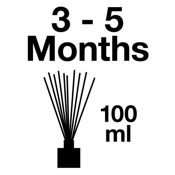 Pairfum Infographic Reed Diffuser Volume Longlasting 100 Ml