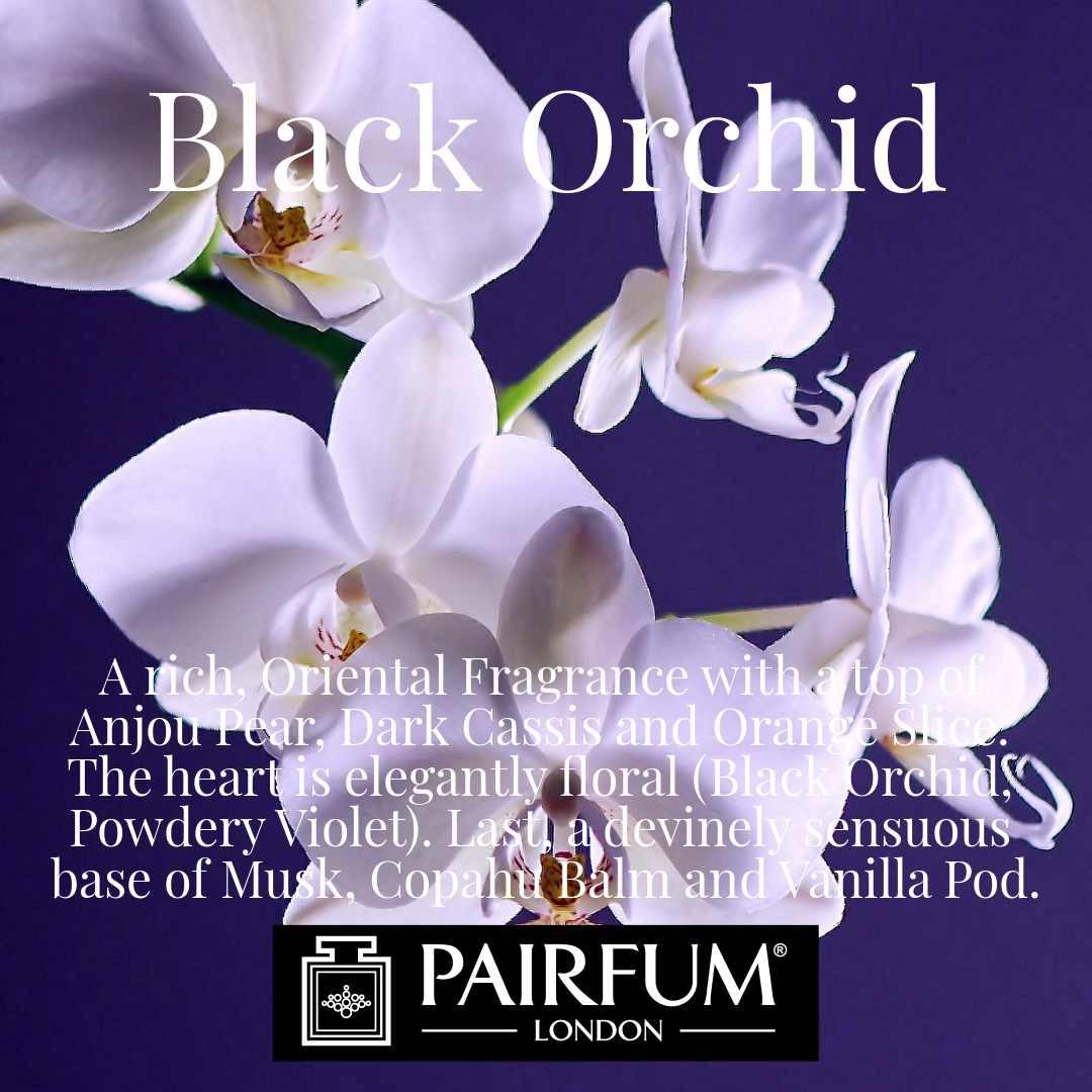 Black Orchid Pairfum London Cassis Violet