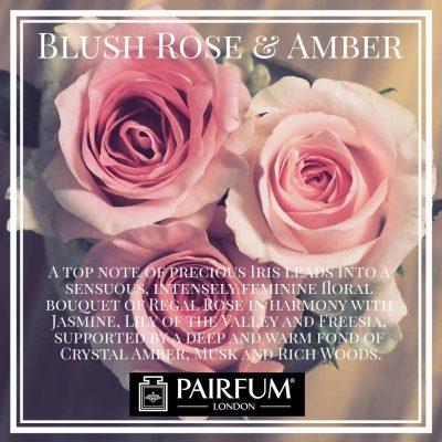 Blush Rose Amber Pairfum London Musk Freesia