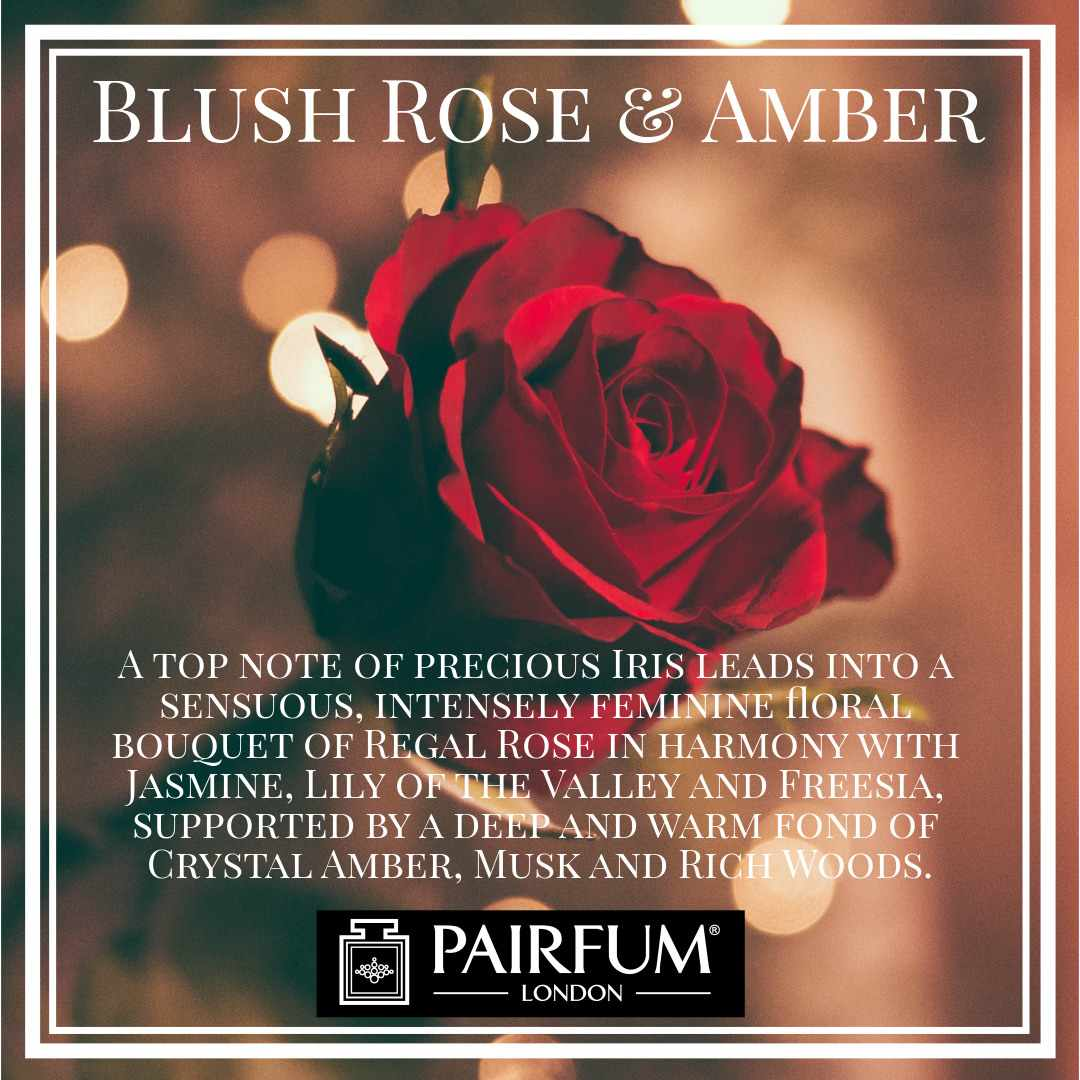 Blush Rose Amber Pairfum London Rich Woods
