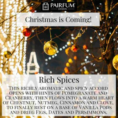 Christmas Coming Pairfum Fragrance Shop Light Spruce