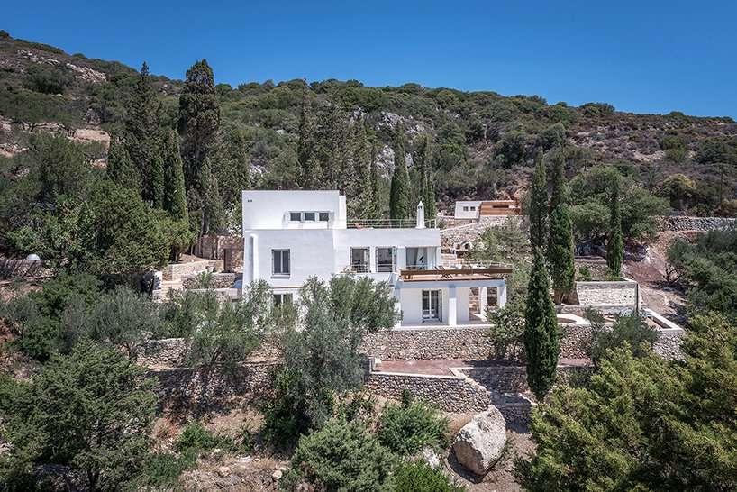 Cypress Fragrance Greece Mediterranean Olive Tree 1