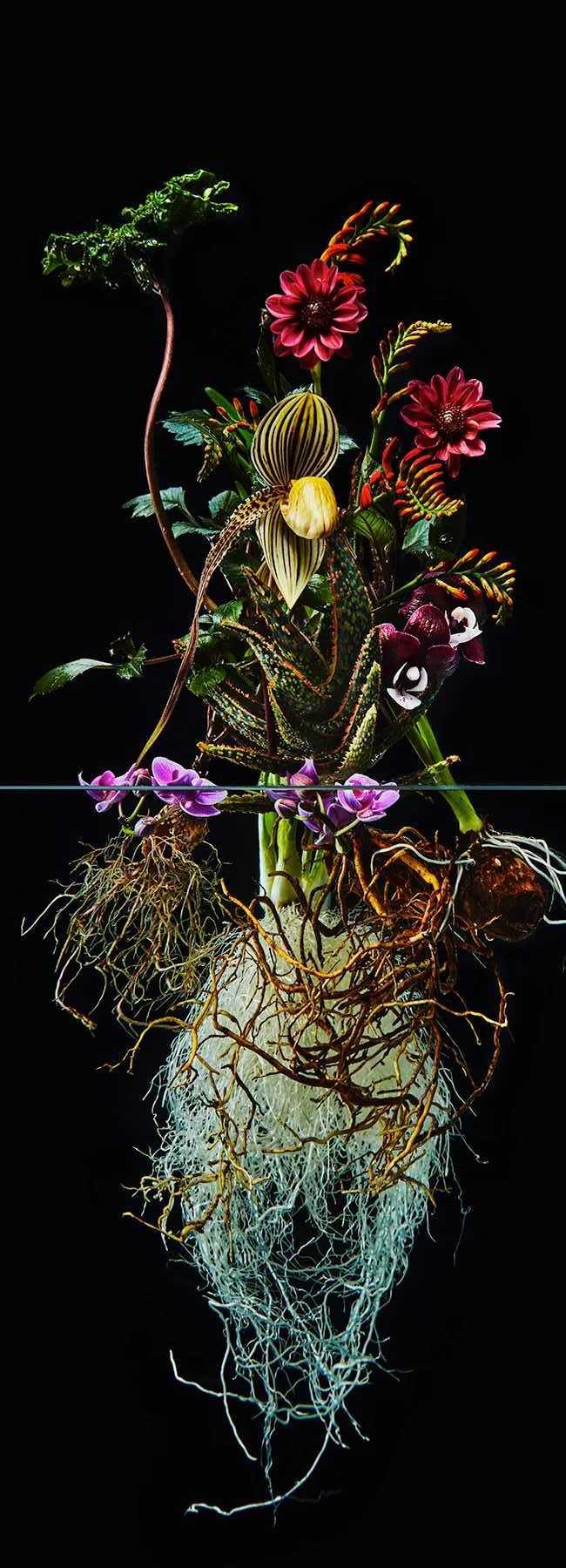 Pairfum London Azuma Makoto Undersurface Flower Root Fragrance 11