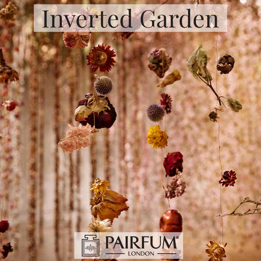 Pairfum London Community Ethernal Inverted Garden Rebecca Law 9