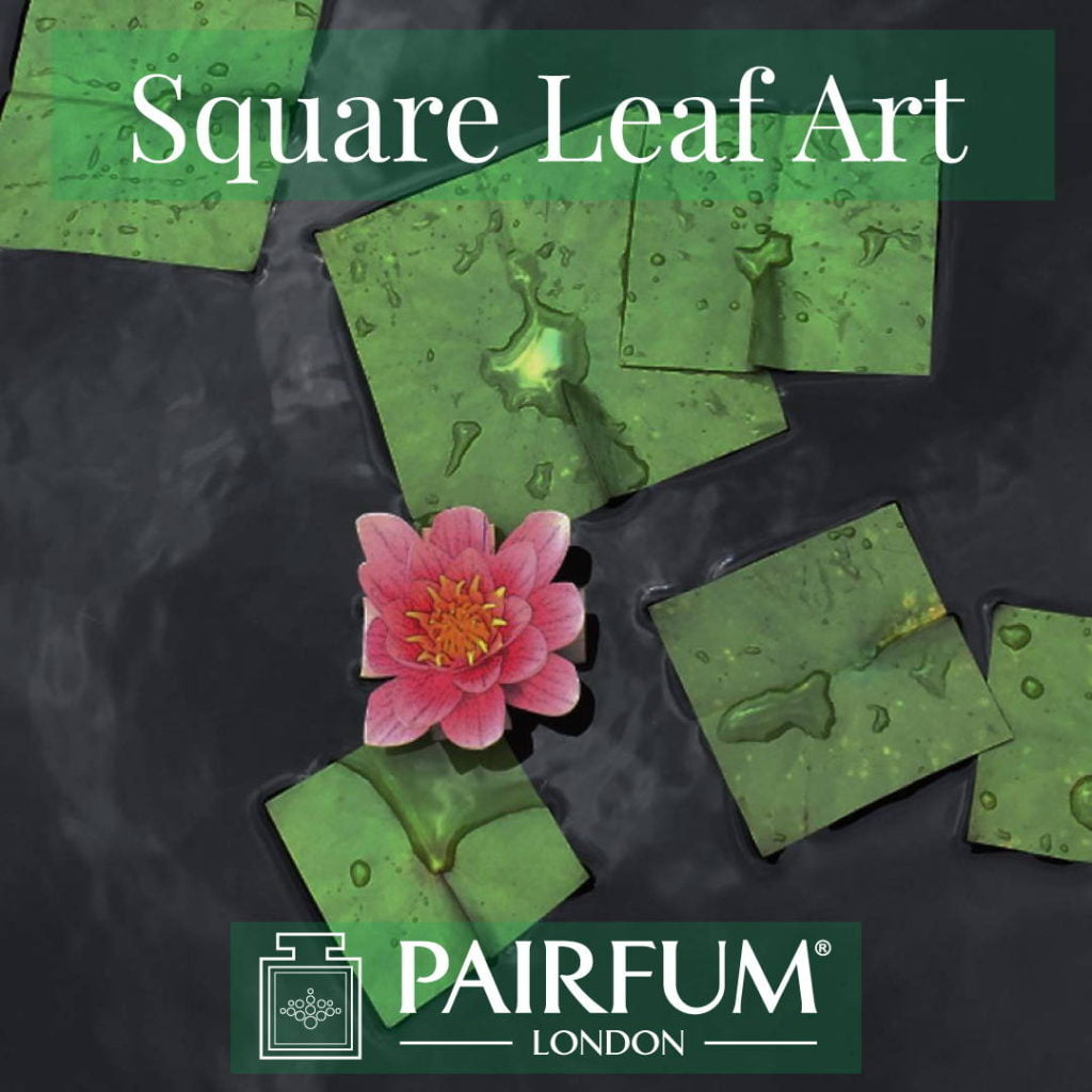 Square Leaf Art Green Water Lily Natural Form
