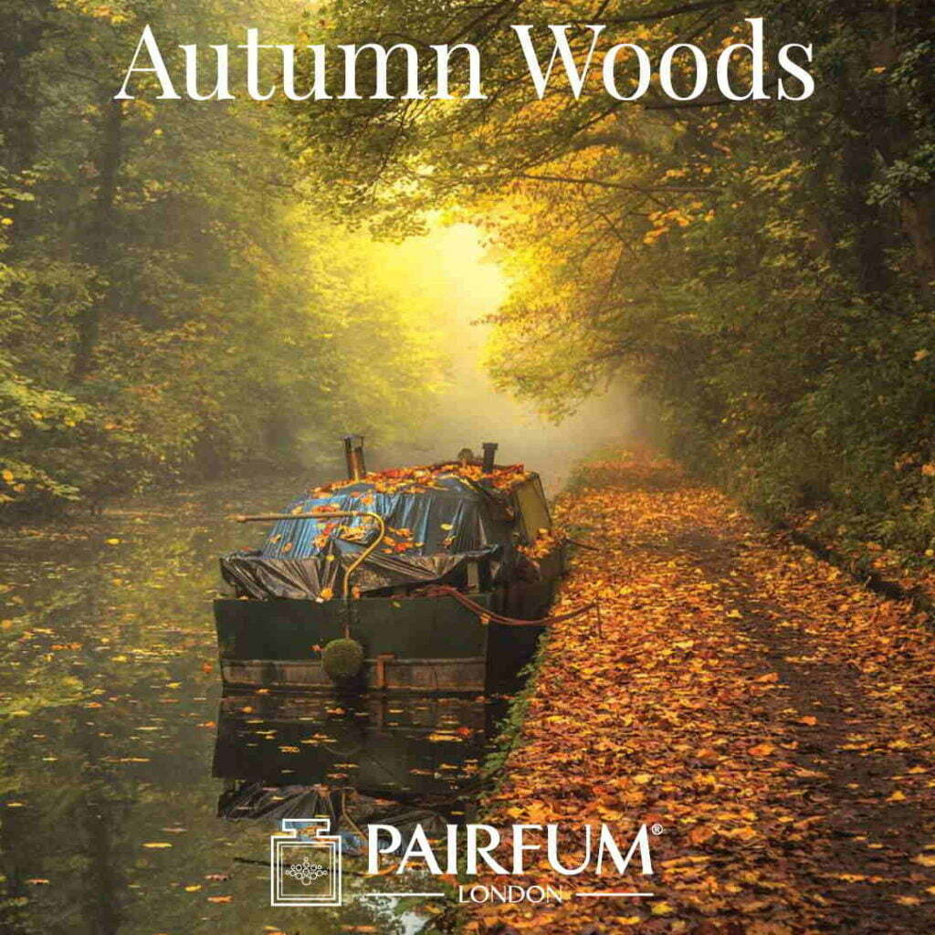 Outdoor Photgrapher Year Fragrance Autumn Wood Canal Chris Fletcher