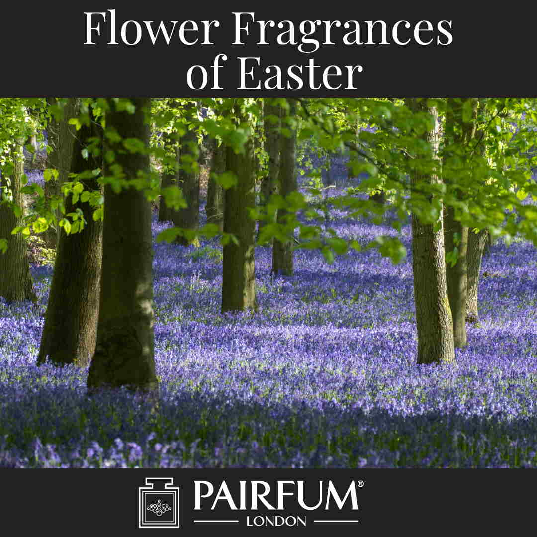 Flower Fragrances Of Easter Bluebels Woodland