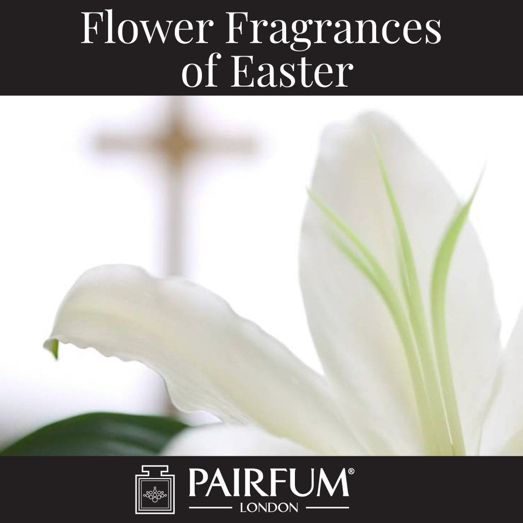 Flower Fragrances Of Easter White Lily
