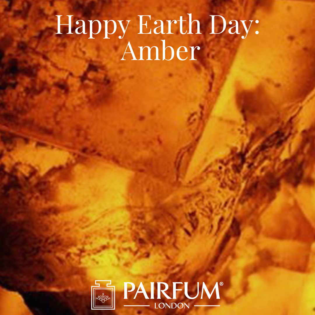 Happy Earth Day Amber Perfumery Goup