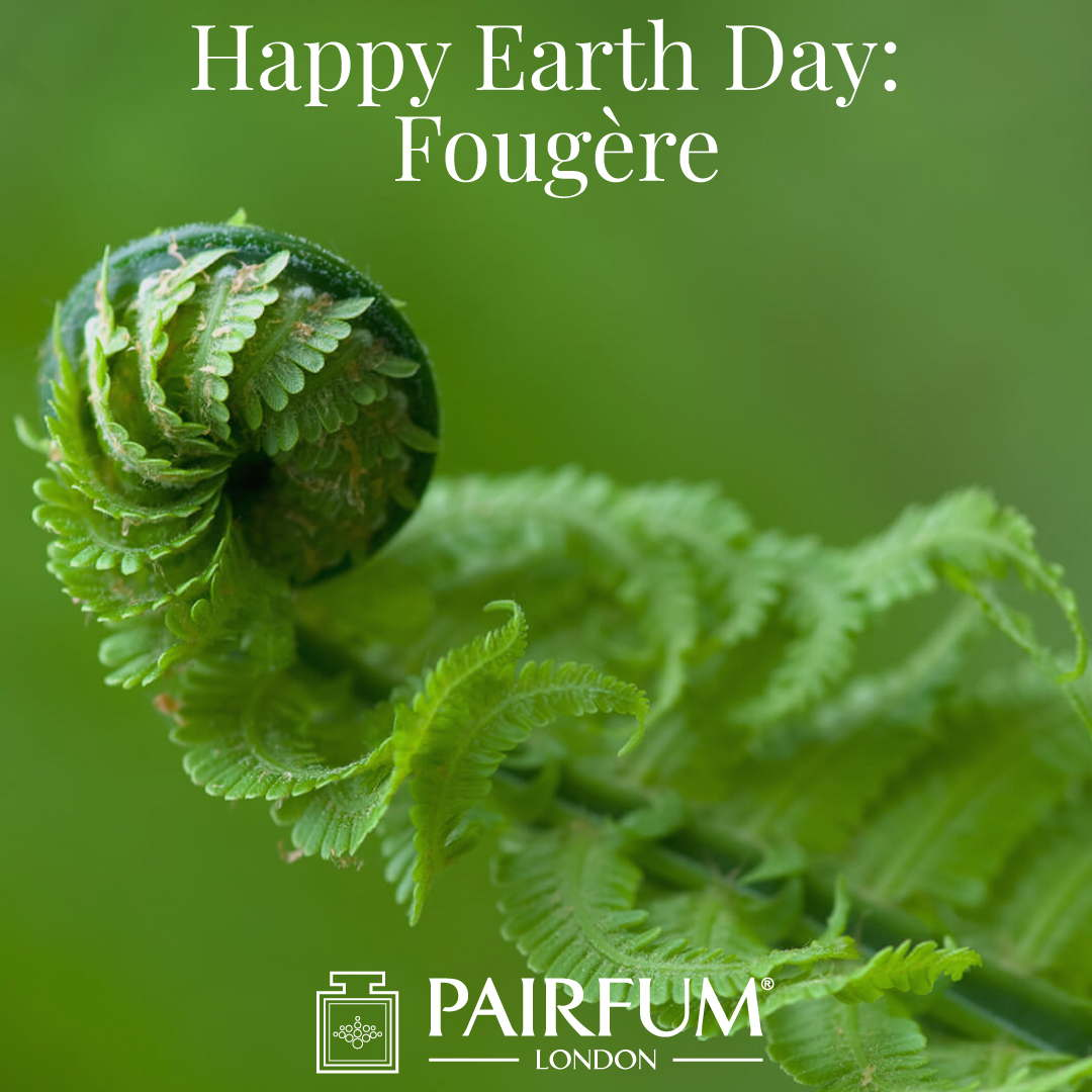 Happy Earth Day Fougere Perfumery Accord