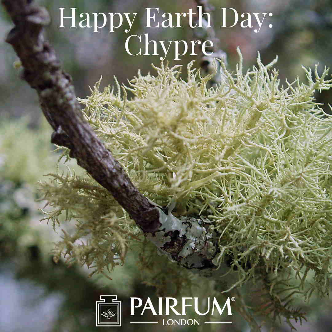Happy Earth Day Oakmoss Chypre Fragrance
