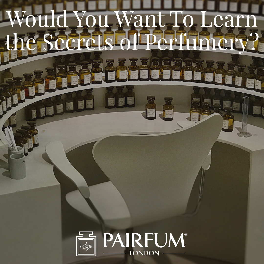 Want Learn Secrets Of Perfumery Pairfum London Fragrance