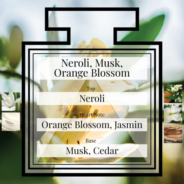 Pairfum Fragrance Neroli Musk Orange Blossom Triangle Ingredients