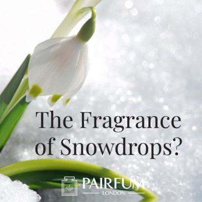 Fragrance Of Snowdrops Ice Fresh Uk London