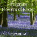 Pairfum London Fragrance Flowers Of Easter Bluebell Woodland