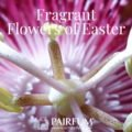 Pairfum London Fragrance Flowers Of Easter Passion Flower