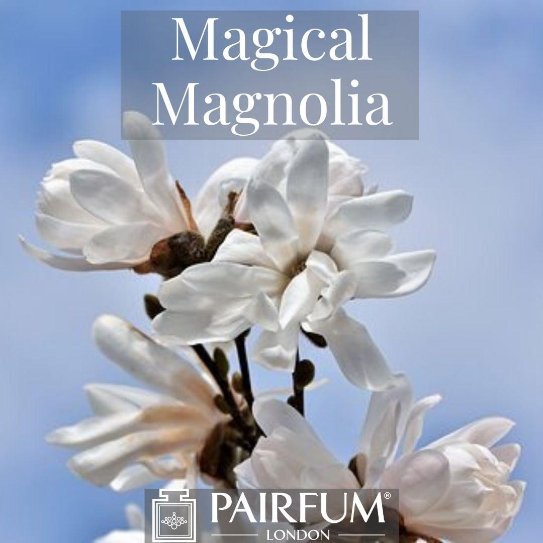 INSTAGRAM MAGICAL MAGNOLIA