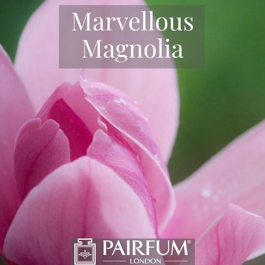 INSTAGRAM MARVELLOUS MAGNOLIA