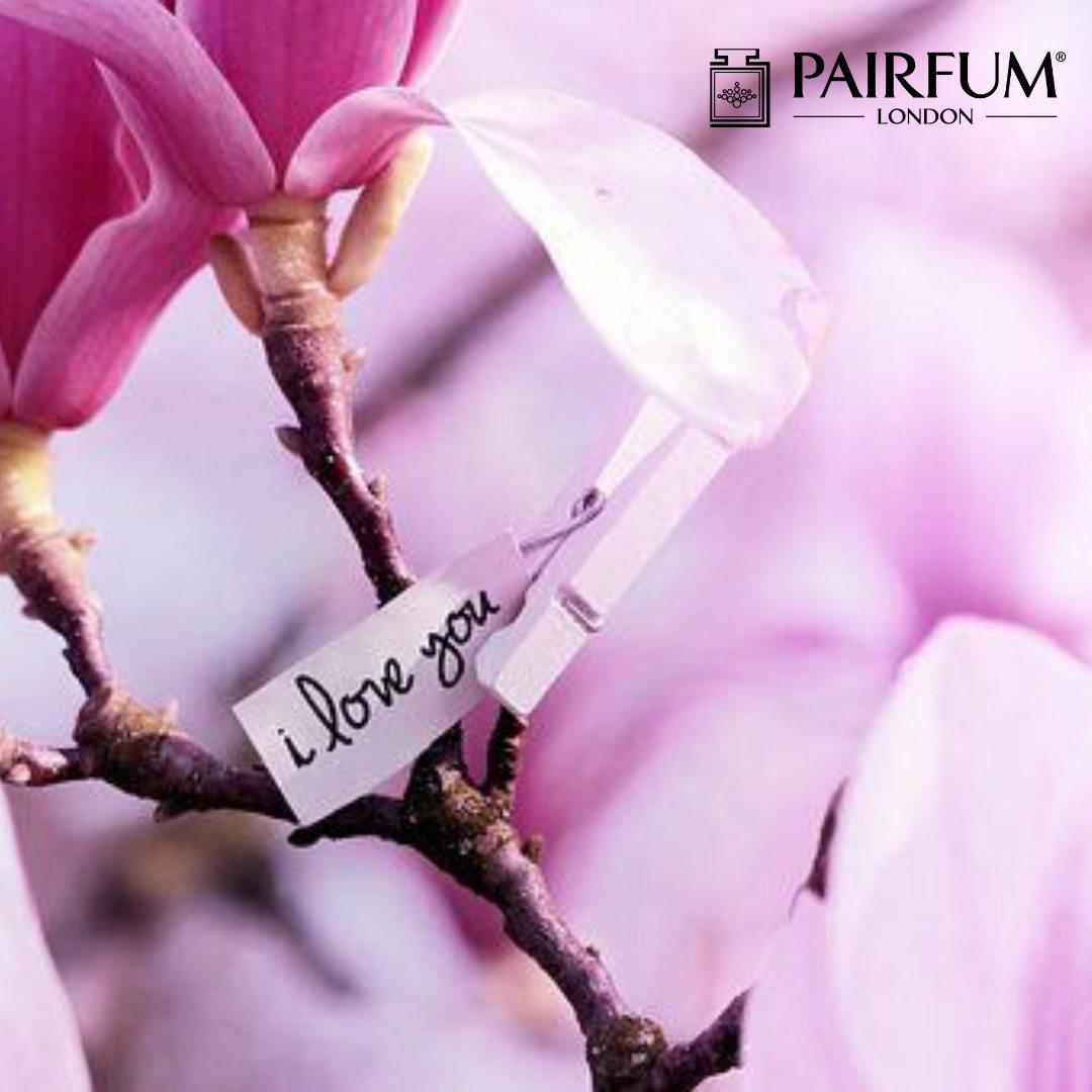 Pairfum Londn Magnolia