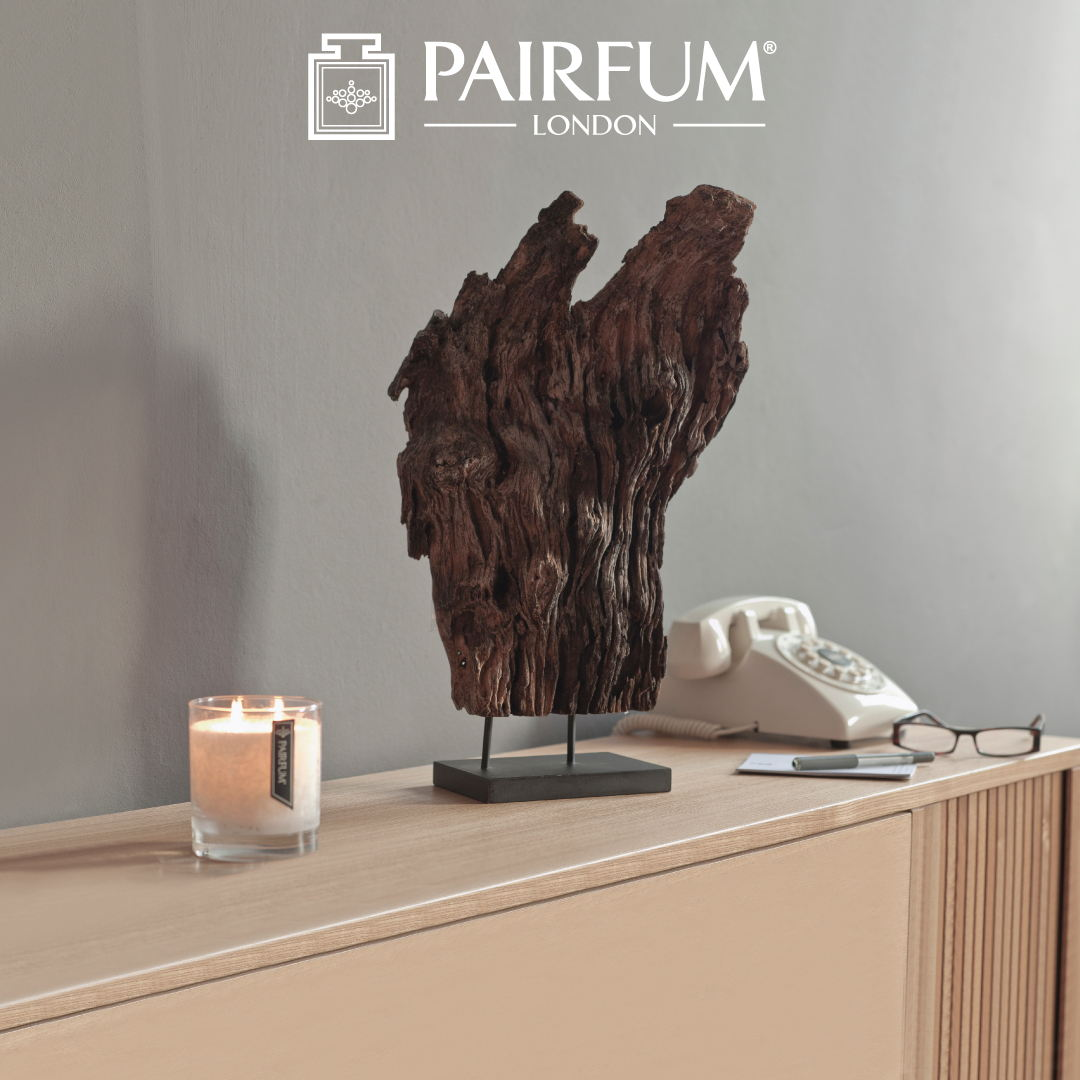 Pairfum Lifestyle Hallway Driftwood Scented Candle Cedar Noir 1 1