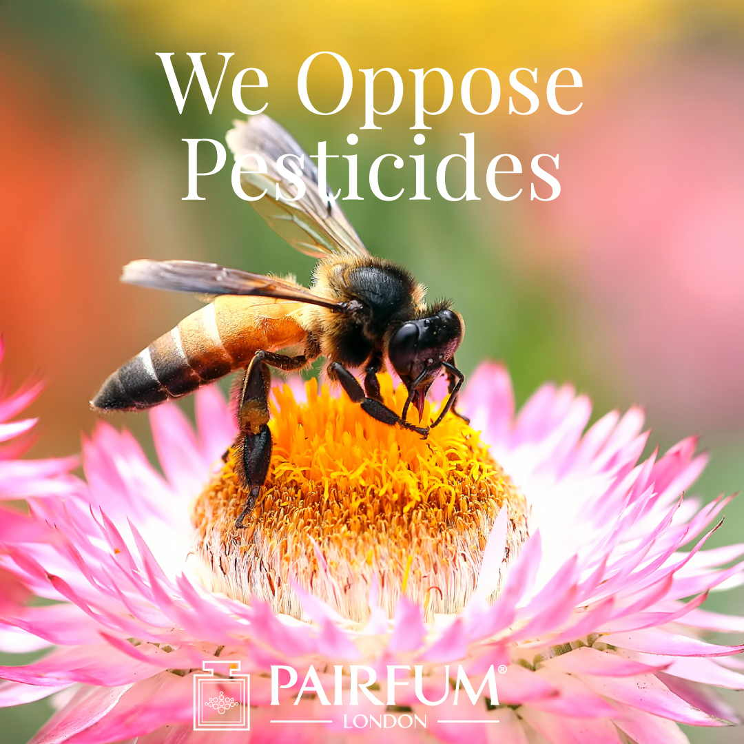 Pairfum London Opposes Bee Killing Pesticides Pollinator 1 1