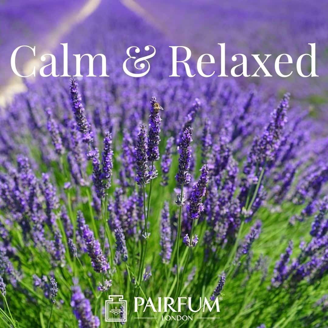 Calm & Relaxing Essential Oil Diffuser