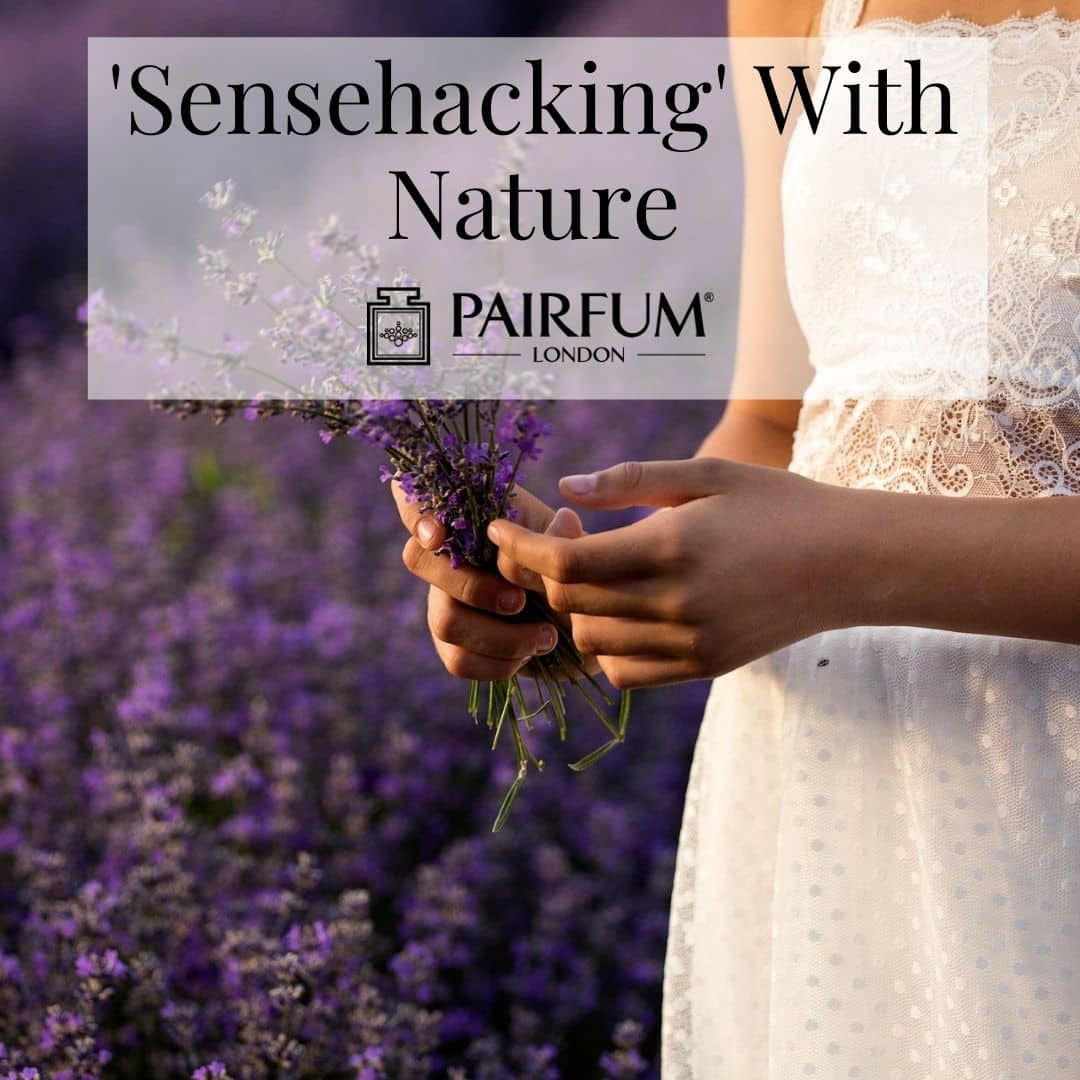 Sensehacking With Nature