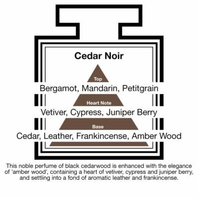 Fragrance Description Cedar Noir Vetiver Juniper Leather Frankincense