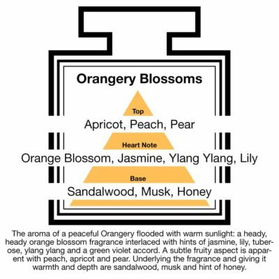 Fragrance Description Orangery Blossoms Apricot Ylang Honey Sandalwood