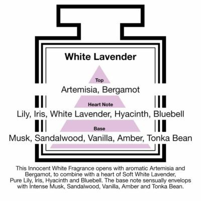 Fragrance Description White Lavender Artemisia Lily Musk Vanilla