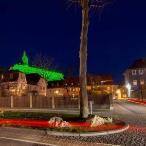 St Patricks Day Heidecksburg Castle Germany